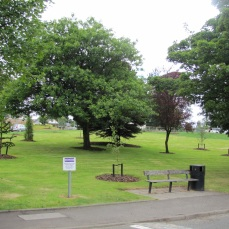 Large bark pits have been added to the existing historic trees and conifers retained within Original grass