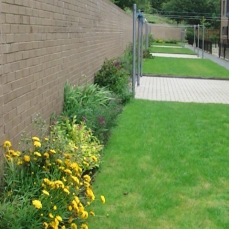 Retaining Wall Mixed Bed